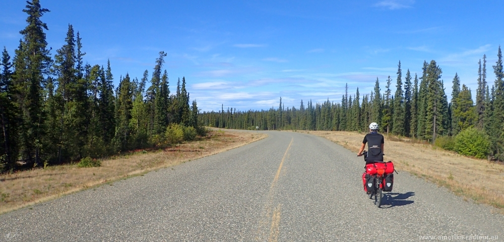 Teslin River Bridge: Mit dem Fahrrad über den Alaska Highway. Etappe Morley Lake - Johnsons Crossing.